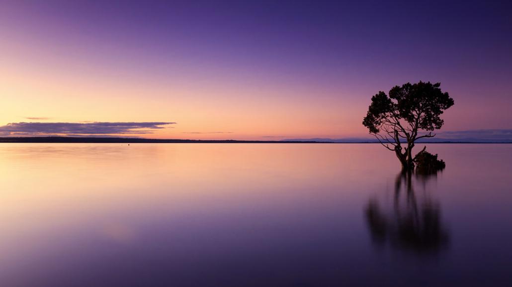 Spanndecken Motiv 02-103 | Sonnenuntergang | Ambiente | Natur