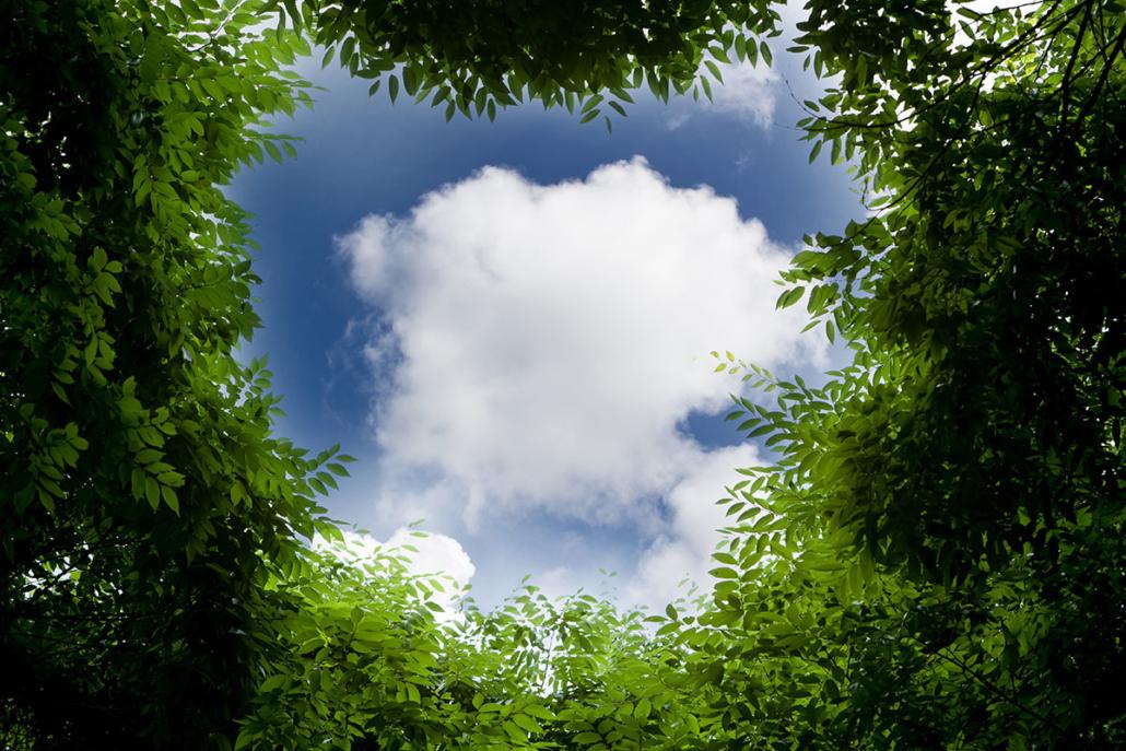 Spanndecken Motiv 07-101 | Natur | Landschaft | Deckenmotiv