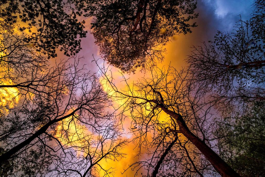 Spanndecken Motiv 07-107 | Natur | Landschaft | Deckenmotiv