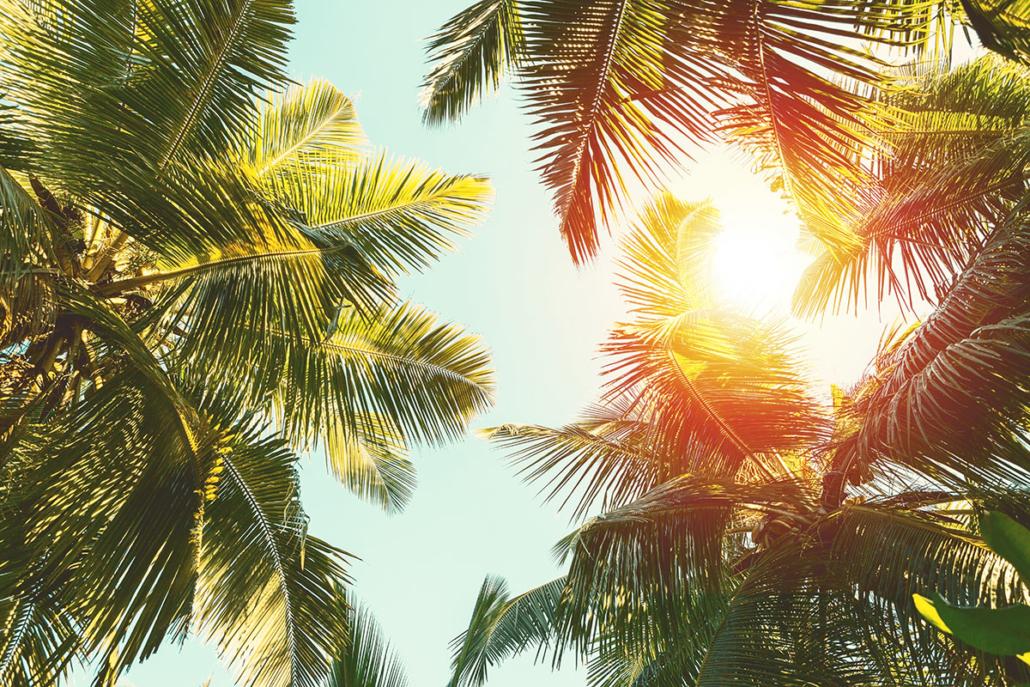 Spanndecken Motiv 07-113 | Urlaub | Landschaft | Deckenmotiv