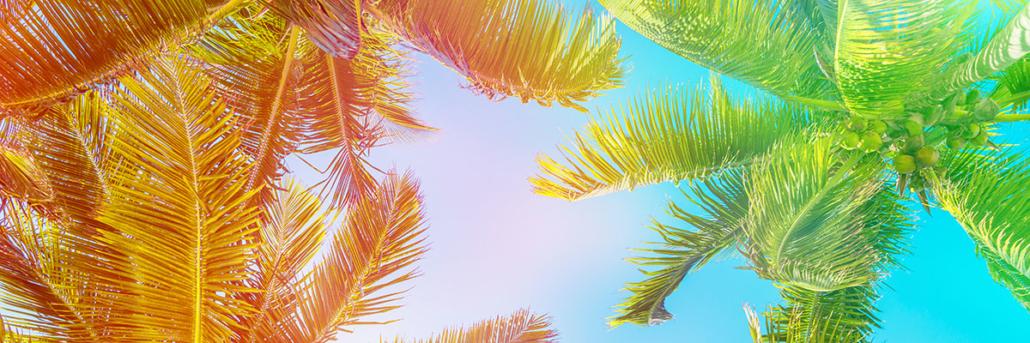 Spanndecken Motiv 07-119 | Urlaub | Landschaft | Deckenmotiv